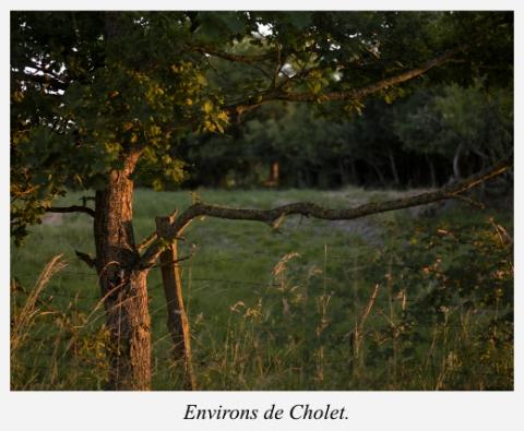 Environs-de-Cholet-Maine-et-Loire