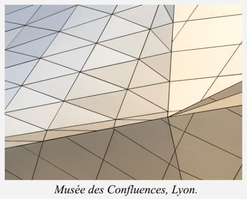 musee-des-confluences-lyon-detail-revetement